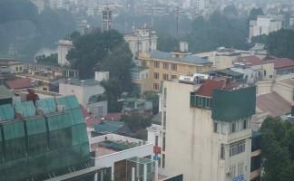 Roofgardening Hanoi, 2015